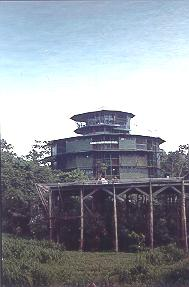 Amazon Jungle Tower in Brazil.